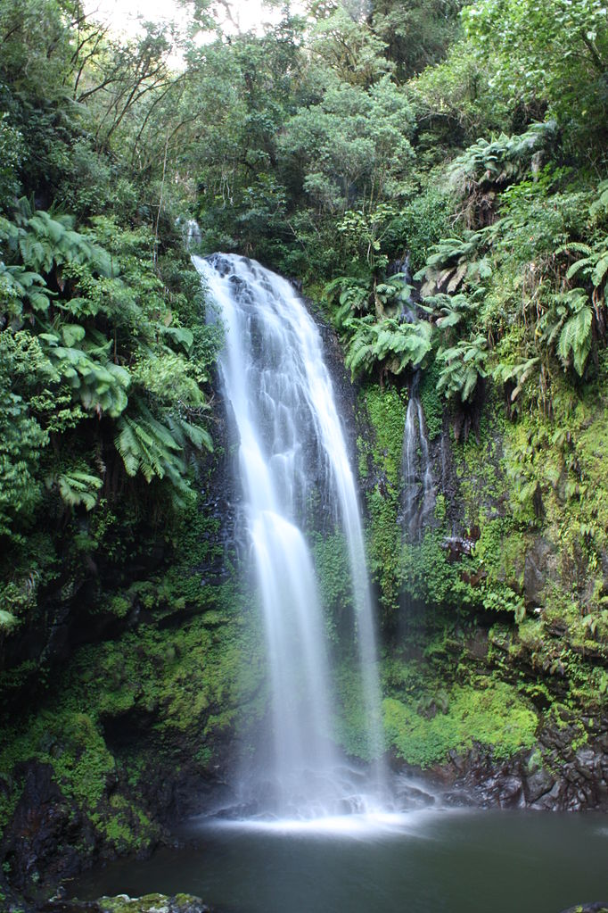 682px-Waterfall_Montagne_d_Ambre_MS5563[1]
